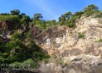 385_West-cliffs_p5012329.jpg
