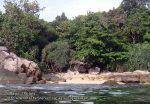 Thai_Lipe_170_K_Beach_PB280303.JPG