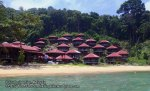 Malay_Perhentian_0749_16c_Ticky-Tacky-Impiani_P8041329.JPG