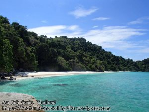 495_8a-Orng-Beach_P4123713.JPG