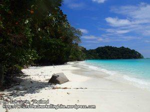 496_8a-Orng-Beach_P4123619.JPG
