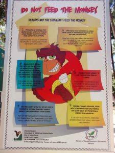 612_8-Langkawi-Monkey-Poster_P3114589.JPG
